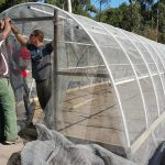 Eco Tunnels Netting