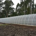 Eco Tunnels 3 x 24m