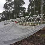 Eco Tunnels Project