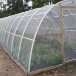 Eco Tunnels 24m Netting